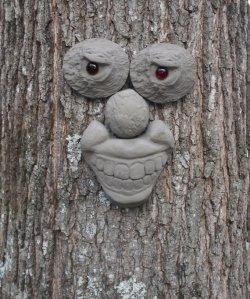 fairy tree face