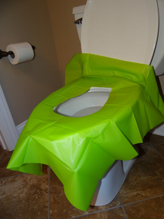 Plastic toilet guard